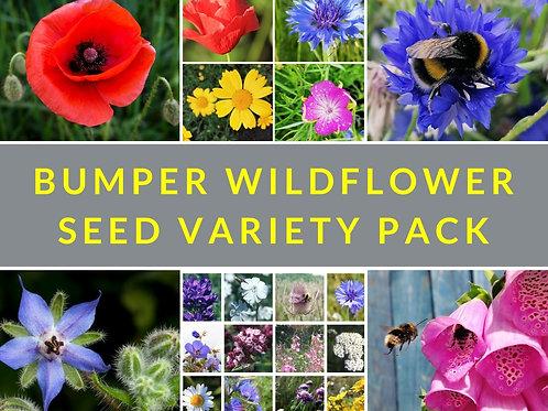 Bumper wildflower seed variety pack