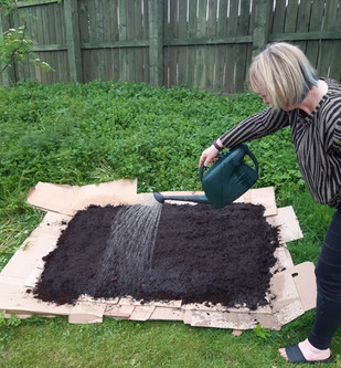 Luncarty & Redgorton in Bloom took this no-dig / cardboard mulch approach to sowing our seeds. It worked brilliantly!
