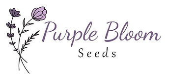 purple_bloom_seeds_logo_name.jpg