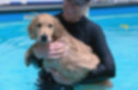 cathy_dog_swimming14_Puddle_edited_edite