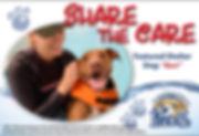 Share-the-Care_dog3_web-1024x697.jpg