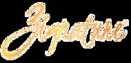 Zignature-logo-png-1_edited.png