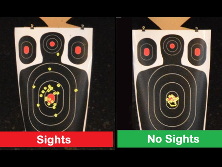 Sights - How Important Are They?