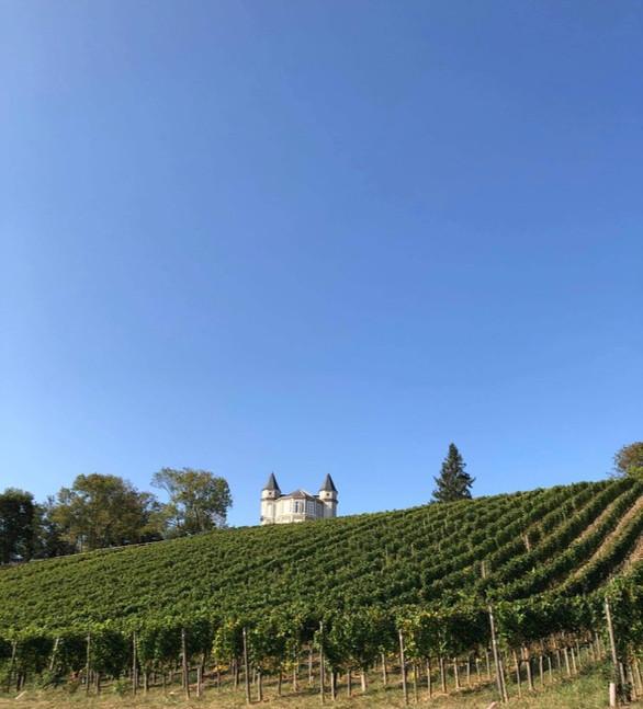 Château de Franqueville et ses vignes