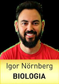 BIO_Igor_Nornberg.png