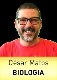 BIO_Cesar_Matos.png