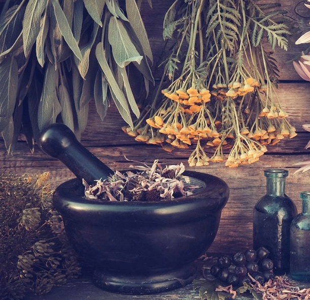Enchanted Herb Pantry
