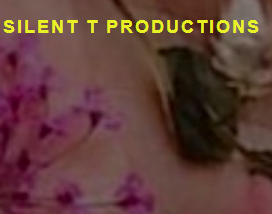 Silent T Productions