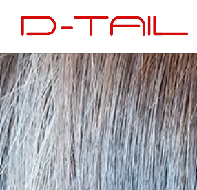 D-Tail Hair Studio