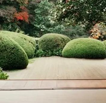 Hanayagi-The Japanese Garden Shop