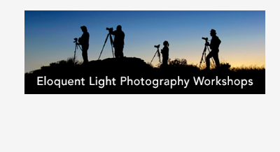 Eloquent Light Photography