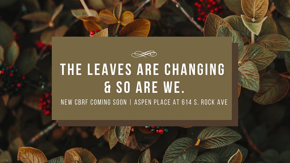 leaves website.png