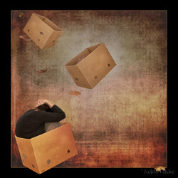 me box weds flat