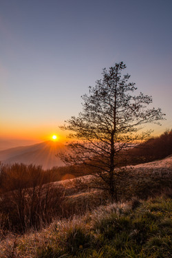 tramonto al cerreto
