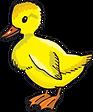 duck class logo.png