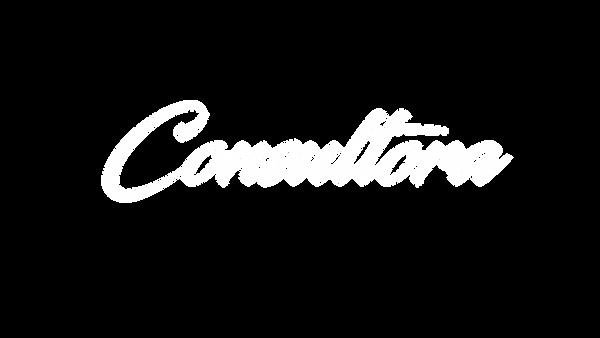 consultora.png