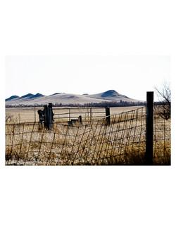 Ranch1