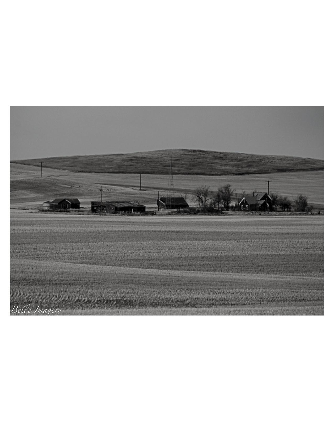Ranch8