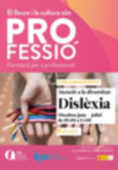S022-20 Dislexia - Sabadell.JPG