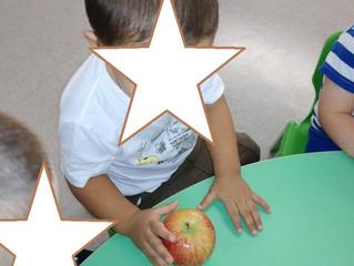 Conhecer os Frutos de Outono