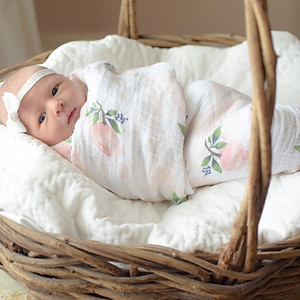 Palmer Read: Newborn/Nursery
