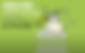 Screen Shot 2020-05-07 at 3.23.33 PM.png