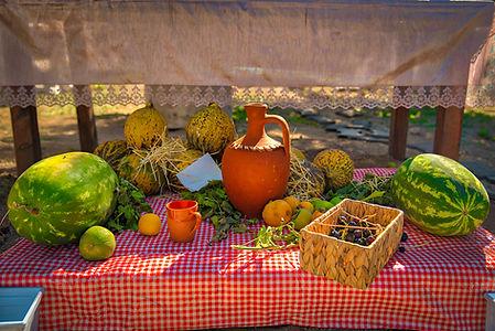 AKD Kids Çocuk Köyü - doğal gıdalar