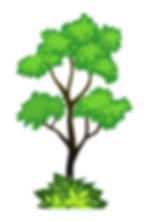 treee_edited.png