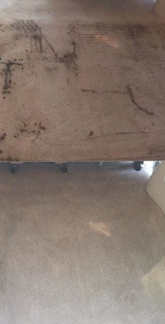 Carpet cleaning and deodorizing