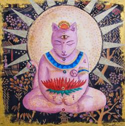 Lilac Buddha Cat