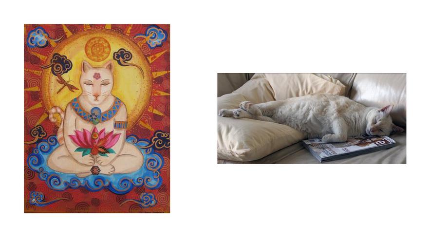 Cloudy Buddha Cat