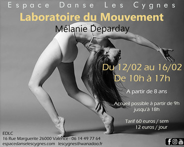 stage laboratoire du mouvement 2018