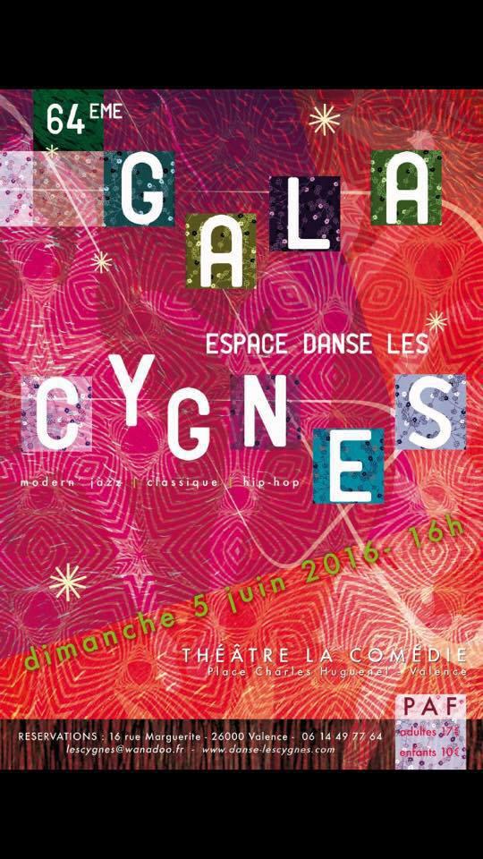 spectacle Espace Danse Les Cygnes 2016