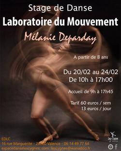 stage laboratoire du mouvement 2017