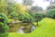 Den kinesiske have