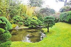 JAの庭木
