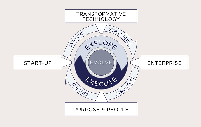 SwissLEAP's virtuous cycle of Lasting Enterprise Action Practices - Ecosystem illustration