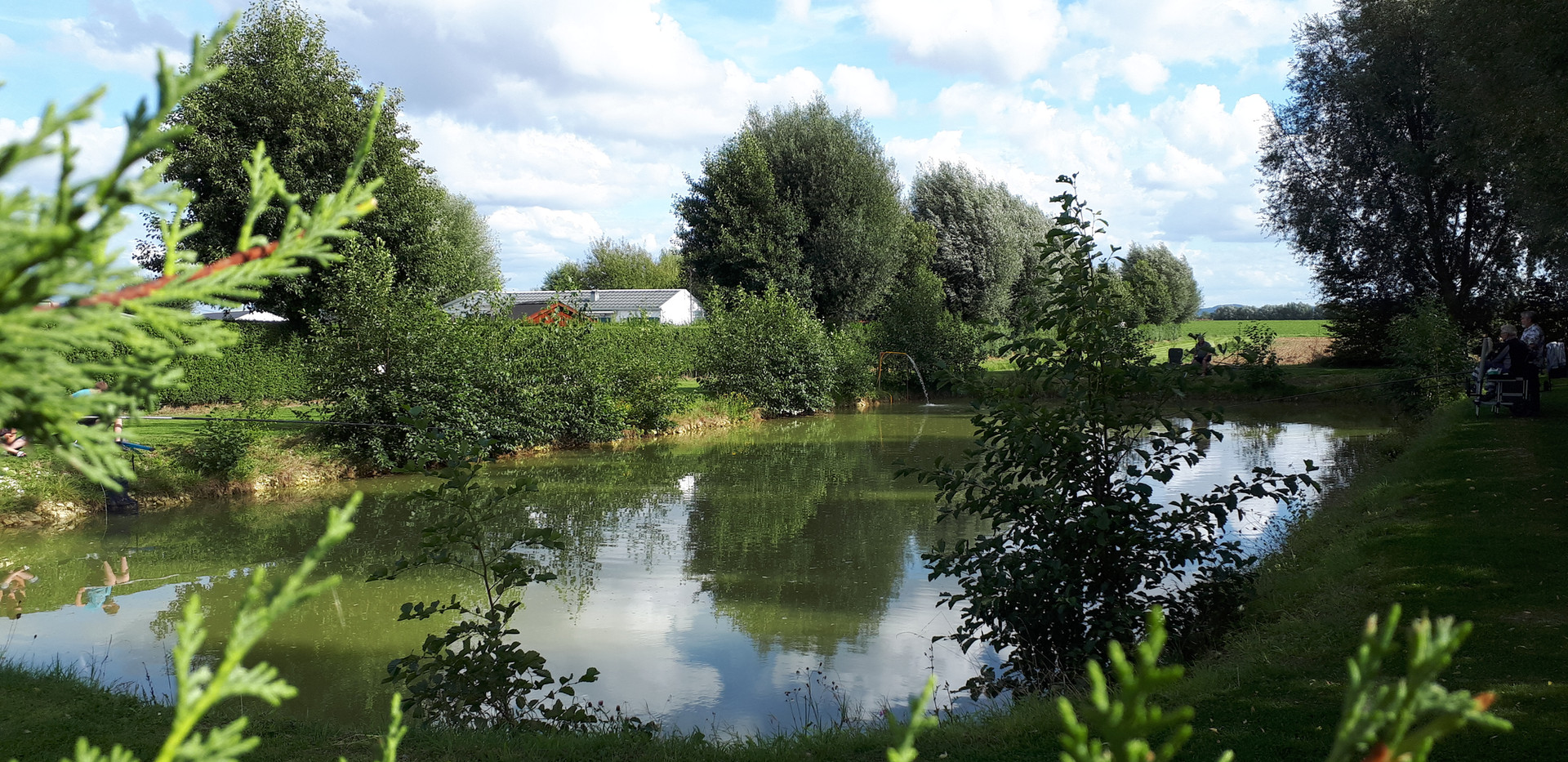 domaine-camping-groeneveld-pêche-poisson