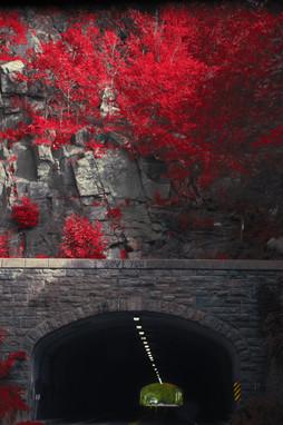 Bear Mountain Bridge, NY