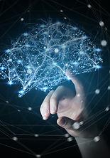 Neuroplasticity BWRT