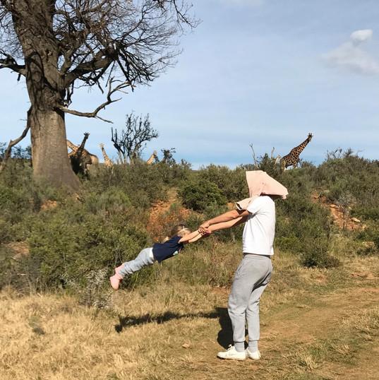 giraffe soars.jpg