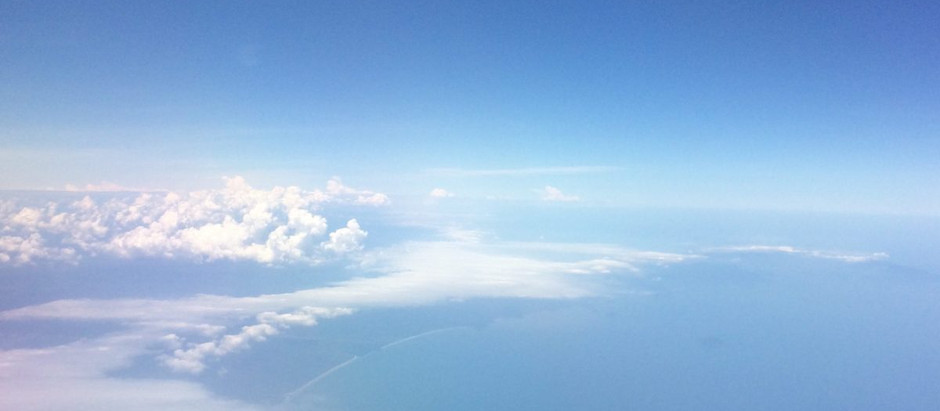 Pensando no voo...