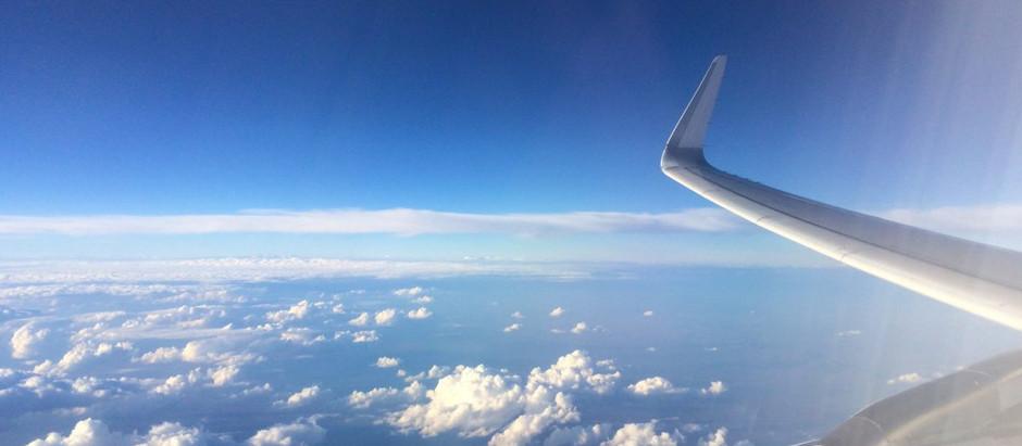 Pensando no voo: resultados