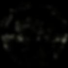 Distressed Logo(transparent).png