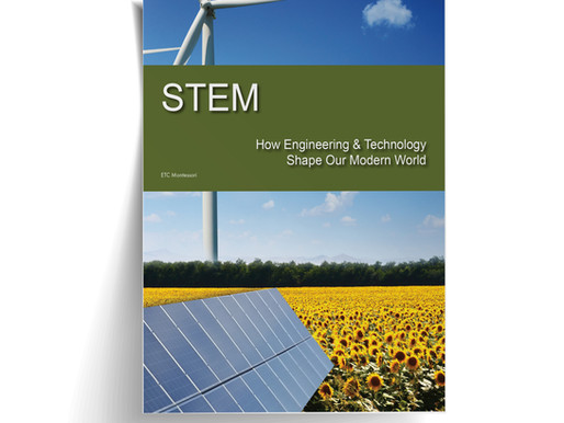 STEM - Implementation & Application