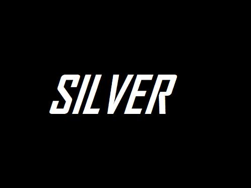 Assinatura - SILVER