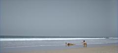 Screen Shot 2021-02-06 at 11.35.05 AM.pn