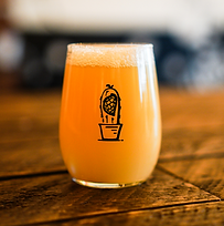 Nel-flow NEIPA_edited_edited.png