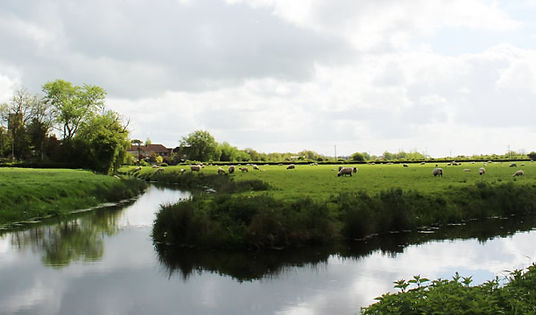 somerset-levels.jpg