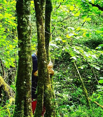 Câlin avec son arbre